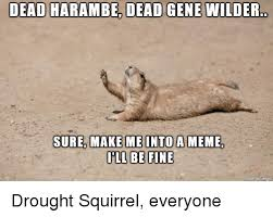 Make A Picture Into A Meme - dead harambe dead gene wilder sure make me into a meme ill be fine