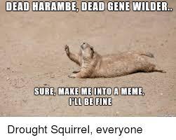 Dead Squirrel Meme - dead harambe dead gene wilder sure make me into a meme ill be fine
