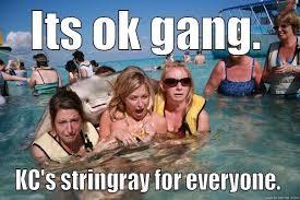 Stingray Meme - pervert stingray memes quickmeme