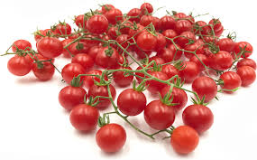 red currant tomatoes information recipes and facts