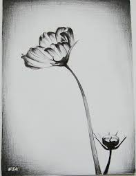 Pencil Sketch Of Flower Vase Pencil Sketches Flower Vase Archives Pencil Drawing Collection