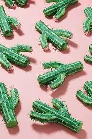 urban cactus ring holder images Mini cactus pinata gifts wishlist pinterest cactus mini jpg
