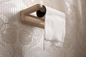 dog toilet paper holder help i u0027ve found bright red blood in my stool