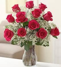 hot pink roses 1 dozen hot pink roses