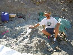 the fossil preparation lab at the utah geological survey bringing