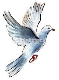 25 trending white dove tattoos ideas on pinterest dove tattoos