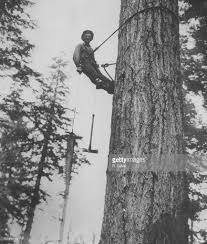 high climber pictures getty images
