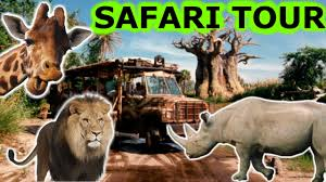 african safari animals disney world kilimanjaro african safari tour animal kingdom hd