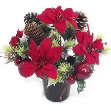 Christmas Flowers Christmas Flowers Amazon Co Uk