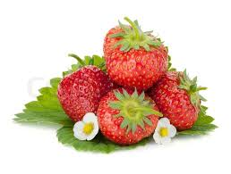 flowers and fruit four strawberry fruits with green leaves and flowers stock photo