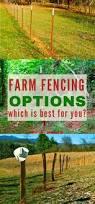 best 25 farm fencing ideas on pinterest farm fence pasture