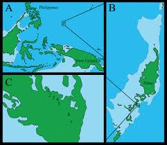 Palau Map Revision Of Partulidae Gastropoda Stylommatophora Of Palau