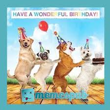 Happy Birthday Dog Meme - why no one talks about happy birthday dog meme anymore