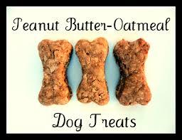 thanksgiving cornucopia treats oatmeal peanut butter dog treats veronica u0027s cornucopia
