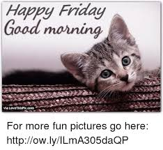 Happy Friday Memes - good morning happy friday meme social media la