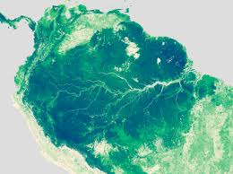 Amazon River World Map by Global Forest Heights Take Two Image Of The Day