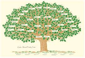 how to start a family genealogy search cyprus magazine