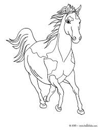 wild horse coloring pages hellokids