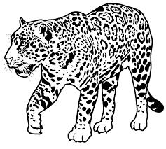 coloring pages fabulous jaguar coloring pages printable pictures