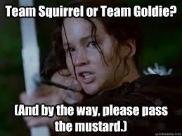 Hunger Games Meme - hunger games memes quickmeme