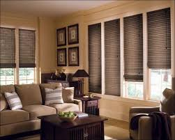 Tan Mini Blinds Living Room Magnificent Roman Shades Walmart Cordless Mini