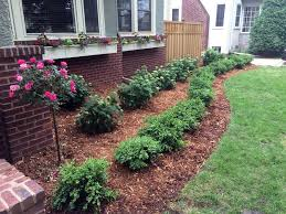 Small Shrubs For Front Yard - 5 best shrubs and bushes for curb appeal in minnesota kg