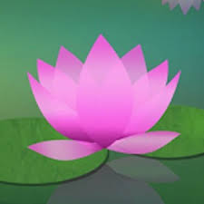 apps u2014 meditation oasis