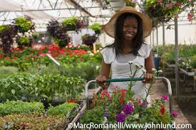 shopping for flowers young black shopping cart full of