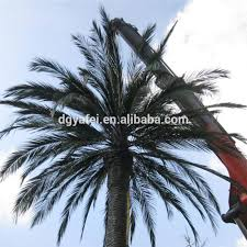 tot sale anti sago palm trees high end anti uv