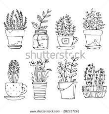 Flower Drawings Black And White - best 25 flowers draw ideas on pinterest grafica centro rj