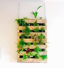 interior garden wall vertical garden how to make it its benefits and ideas