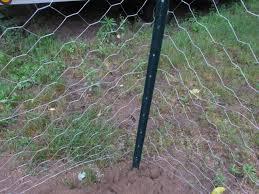 Chicken Wire Chandelier New 70 Wire Fences For Gardens Decorating Design Of Origin Point
