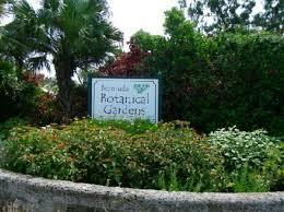 Bermuda Botanical Gardens Tnn Bermuda News As It Happens Traffic Advisory For Sunday Morning
