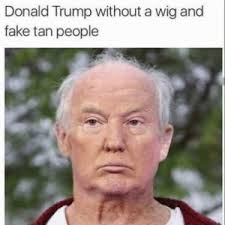 Meme People - donald trump without a wig and fake tan people meme xyz