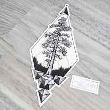 cedar hashtag images on gramunion explorer