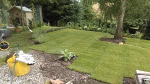 new house overgrown garden gardening forum gardenersworld com