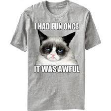 Grumpy Cat Meme I Had Fun Once - men s official grumpy cat i had fun once it was awful t shirt all