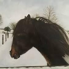 irish horse welfare trust dedicated to the welfare of equines in
