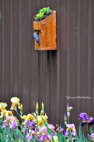 1267 best bird houses and chimes images on pinterest bird house