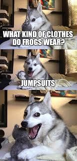 Clothes Meme - bad pun dog meme what kind of clothes do frogs wear jumpsuits