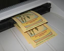 seed envelopes astragalus seed packets hot the press green journey seeds