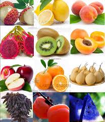2017 260 mix fruits combo seeds popular non gmo edible
