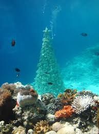 christmas trees the cool listboe magazine anantara maldives