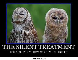 Funny Owl Meme - silent treatment owl memey com