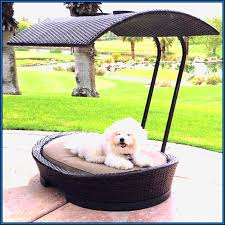 Pet Canopy Bed Kh Pet Cot Canopy Bed Shade Overhang Products Regarding