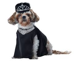 dog costumes spirit halloween pet halloween costumes