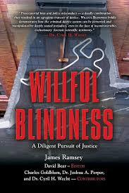 Willful Blindness Aml Willful Blindness Best Blind 2017