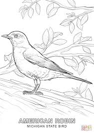 michigan state bird coloring page free printable coloring pages