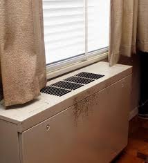 Types Of Mold In Bathroom by A Brief Guide To Mold Moisture And Your Home Mold Us Epa