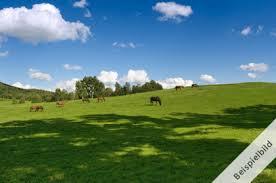 brachfläche weideland brachfläche ab 5 ha agrarimmobilien acker wald und wiese